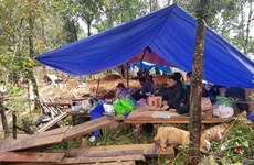 Quảng Nam: Xây khu tái định cư cho đồng bào vùng sạt lở núi ở Trà Leng