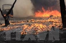 [Photo] Hà Nội: Cháy lớn tại bãi chứa hàng ở quận Hoàng Mai
