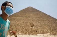 Ai Cập có 4 chủng virus SARS-CoV-2 gây ra triệu chứng khác nhau