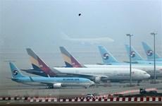 Số vụ tai nạn đường hàng không giảm hơn 50% trong năm 2020