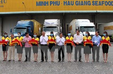 Hậu Giang: Chính thức xuất khẩu lô tôm đầu tiên trong năm 2021