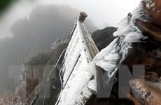 [Photo] Quảng Ninh: Băng giá trên đỉnh núi Cao Ly và chùa Đồng