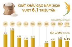 [Infographics] Năm 2020 xuất khẩu gạo của cả nước vượt 6,1 triệu tấn