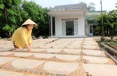 Giữ lửa cho làng nghề bánh tráng truyền thống ở Cù lao Mây