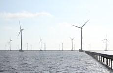 Bạc Liêu: Tìm giải pháp gỡ khó cho các dự án đầu tư điện gió