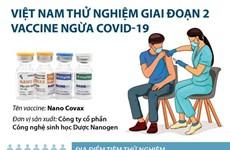 [Infographics] Việt Nam thử nghiệm giai đoạn 2 vắcxin ngừa COVID-19