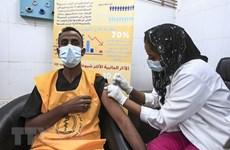 Sức ép địa chính trị vaccine làm chệch hướng phục hồi châu Phi
