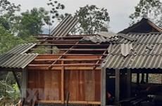 Lâm Đồng: Mưa lớn kèm lốc xoáy làm 1 người chết, 2 người bị thương