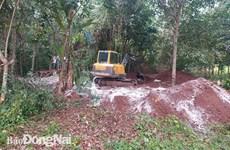 Đồng Nai: Kiểm tra hiện trường vụ chôn lấp trái phép 138 con lợn chết