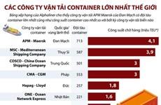 [Infographics] Các công ty vận tải container lớn nhất thế giới