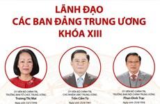 [Infographics] Lãnh đạo các ban Đảng Trung ương khóa XIII