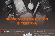 [Infographics] Những vụ án ma túy lớn bị triệt phá từ năm 2020 đến nay