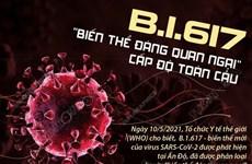 """[Infographics] B.1.617 là """"biến thể đáng quan ngại"""" cấp độ toàn cầu"""