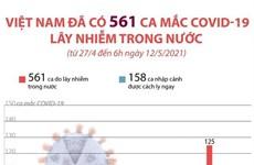 [Infographics] Việt Nam đã có 561 ca mắc COVID-19 lây nhiễm trong nước