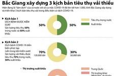 [Infographics] 3 kịch bản tiêu thụ vải thiều của Bắc Giang trong dịch