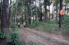 """Thừa Thiên-Huế: Trực chiến sẵn sàng đối phó với """"giặc lửa"""" trong rừng"""