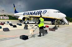 EU cấm các hãng hàng không của Belarus bay qua không phận