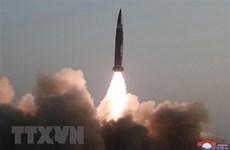 Tổng thống Nga Putin nêu quan điểm về vấn đề hạt nhân của Triều Tiên