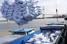 Giá gạo lên cao nhất trong hơn 9 năm, kỳ vọng xuất khẩu khởi sắc