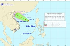 Xuất hiện vùng áp thấp trên vùng biển phía Đông quần đảo Hoàng Sa