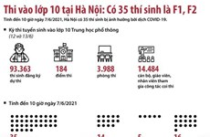 [Infographics] Thi vào lớp 10 tại Hà Nội: Có 35 thí sinh là F1, F2