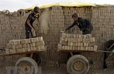 ILO và UNICEF cảnh báo có thêm 9 triệu trẻ bị ảnh hưởng COVID-19
