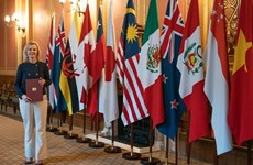 """Cơ hội """"cùng thắng"""" giữa các nước thành viên CPTPP và Anh"""