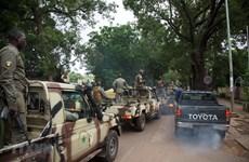 Chủ nghĩa bạo lực cực đoan đe dọa khu vực các nước Tây Phi