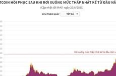 Bitcoin hồi phục sau khi rơi xuống mức thấp nhất từ đầu năm 2021