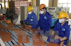 Đồng bộ các giải pháp phát triển vật liệu xanh tại Việt Nam