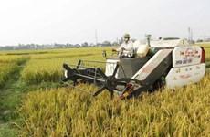 """Công nghệ Israel """"tưới mát"""" ngành nông nghiệp Đông Nam Á"""