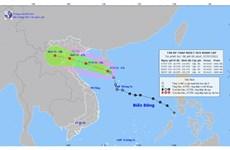 Áp thấp nhiệt đới khẩn cấp trên Biển Đông, sức gió mạnh nhất cấp 8