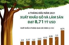 [Infographics] Xuất khẩu gỗ và lâm sản 6 tháng đầu năm đạt 8,71 tỷ USD