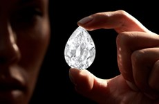 Viên kim cương 101 carat đầu tiên được mua bằng tiền điện tử