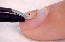 Độc đáo vi chip biến móng tay thành danh thiếp kỹ thuật số