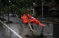 Trung Quốc: Bão In-Fa đổ bộ, toàn bộ chuyến bay ở miền Đông bị hủy