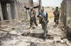 Afghanistan đẩy lùi cuộc tấn công của Taliban ở ngoại ô Herat