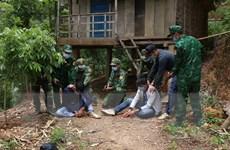 [Photo] Bộ đội Biên phòng tỉnh Điện Biên đánh án vùng biên