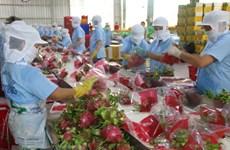 Kim ngạch xuất khẩu của Tiền Giang trong 7 tháng năm 2021 tăng 19,8%