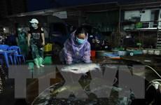 Chợ cá Sở Thượng duy trì cung cấp thuỷ sản cho người dân Thủ đô