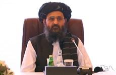 Thủ lĩnh Abdul Ghani Baradar - Tổng thống Afghanistan tiềm năng