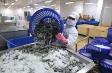 Tháo gỡ khó khăn cho ngành tôm trong điều kiện dịch bệnh