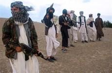 Chuyên gia Israel lo ngại Taliban lan truyền tư tưởng cực đoan
