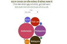 Đông Nam Á vẫn là điểm dịch COVID-19 nóng nhất ở Châu Á