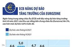 [Infographics] ECB nâng dự báo tăng trưởng của khu vực Eurozone