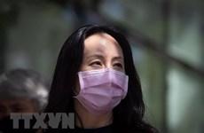 Mỹ nối lại đàm phán với Huawei để dàn xếp thỏa thuận nhận tội
