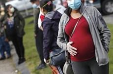 Vaccine không ảnh hưởng đến chu kỳ hay khả năng sinh sản của phụ nữ