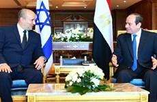 Tầm nhìn Ai Cập trong nỗ lực nối lại tiến trình hòa bình Trung Đông