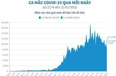 [Infographics] Ca mắc COVID-19 qua mỗi ngày tại Việt Nam