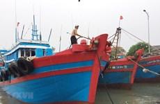 Quảng Trị nghiêm cấm tàu thuyền ra khơi từ chiều 23/9 để tránh bão